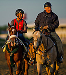 MAY 14, 2015: Mr. Z  comes off the track with trainer D. Wayne Lukas after exercising in preparation for the Preakness Stakes at Pimlico Race Course in Baltimore, Maryland.  Scott Serio/ESW/Cal Sport Media
