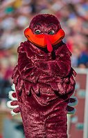 2 November 2013: Virginia Tech Hokies mascot HokieBird stands on the sideline during a game against the Boston College Eagles at Alumni Stadium in Chestnut Hill, MA. The Eagles defeated the Hokies 34-27. Mandatory Credit: Ed Wolfstein-USA TODAY Sports *** RAW (NEF) Image File Available ***
