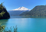 Baker Lake Trail with Mount Baker, Washington 8/15/2020