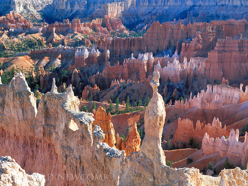 "Hoodoos form the ""Silent City"" in Bryce Canyon National Park."