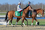 March 27, 2021: Sainthood #5, ridden by jockey Gerardo Corrales finished 2nd in the Jeff Ruby Stakes, a Kentucky Derby prep race at Turfway Park in Florence, Kentucky. Jessica Morgan/Eclipse Sportswire/CSM