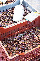 Chestnuts for sale at a market stall at the market in Bergerac in a red and grey plastic basket. Bergerac Dordogne France