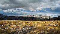 Desolation Wilderness (Mt. Tallac Trail)