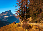 Italien, Suedtirol (Trentino - Alto Adige), Gadertal, oberhalb Wengen: Wanderweg oberhalb von Wengen, im Hintergrund die Puez-Geisler-Gruppe mit dem Gipfel Peitlerkofel (Sass de Putia) | Italy, South Tyrol (Trentino - Alto Adige), Val Badia, hiking trail above La Valle with view to Puez-Geisler-Group with summit Peitlerkofel (Sass de Putia)