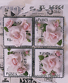 Interlitho-Alberto, FLOWERS, BLUMEN, FLORES, photos+++++,roses,KL16564,#f#, EVERYDAY ,napkins