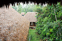 Thatched roofs of Refugio Amazonas jungle lodge, Tambopata River, Peru