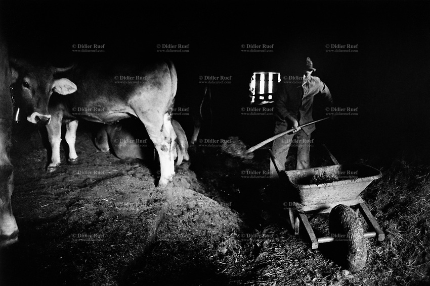 Switzerland. Canton Graubünden. Viano. Poschiavo valley. Luigi Merlo uses a shovel to clean the manure from the cows' stable. Manual labor. Labour force. Swiss alpine farmers. Alps mountains peasants.  © 1994 Didier Ruef