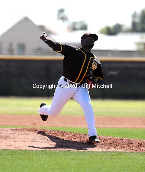 Franklin Van Gurp - San Diego Padres 2020 spring training (Bill Mitchell)