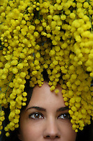 Donna con la mimosa, simbolo della festa della donna. Woman with Mimosa, Acacia dealbata, symbol of celebration of women. ...