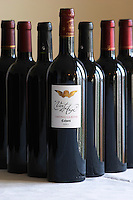 Chateau La Reyne Vent d'Ange Teyssedre Vidal Cahors Lot Valley France