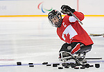 Sochi, RUSSIA - Mar 13 2014 - Greg Westlake knocks over the pucks before Canada takes on USA in Sledge Hockey Semi-Final at the 2014 Paralympic Winter Games in Sochi, Russia.  (Photo: Matthew Murnaghan/Canadian Paralympic Committee)