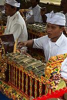 Jatiluwih, Bali, Indonesia.  Young Man Playing a Metallophone in a Gamelan Orchestra,  Luhur Bhujangga Waisnawa Hindu Temple.