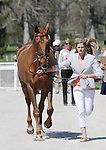 April 23, 2014: Manoir De Carneville and Sinead Halpin during the first horse inspection at the Rolex Three Day Event in Lexington, KY at the Kentucky Horse Park.  Candice Chavez/ESW/CSM