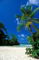 Jamaica, Portland, Port Antonio, Am Traumstrand Frenchman's Cove Beach   Jamaica, Portland, Port Antonio, Frenchman's Cove Beach