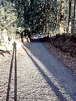 photo submitted <br /> After hundreds of years and thousands of pilgrims, the Carmino de Santiago is well established path.