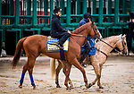 BALTIMORE, MD - MAY 17:  Justify with Humberto Gomez up if accompanied to the track by assistant trainer Jimmy Barnes at Pimlico Racecourse on May 17, 2018 in Baltimore, Maryland. (Photo by Alex Evers/Eclipse Sportswire/Getty Images)