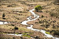 Side stream running into Waimakariri River near Arthur's Pass in Canterbury, South Island, New Zealand