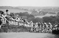 peloton up the very steep Gulperberg (max 19%)<br /> <br /> Amstel Gold Race 2014