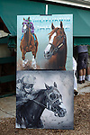 May 17, 2014. Portraits of California Chrome are displayed outside the stakes barn after the colt's victory in the 139th Preakness Stakes at Pimlico Race Course in Baltimore, MD. ©Joan Fairman Kanes/ESW/CSM