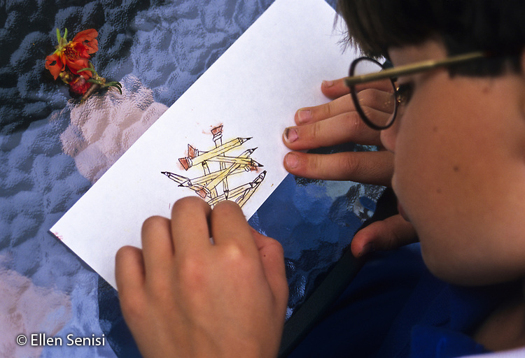MR / Schenectady, New York. Artistically talented boy (10) creates a drawing with pen and natural colors from smeared portulaca blossoms. MR: Fra5 ID: Berry Smudges ©Ellen B.Senisi