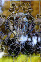 """Rome, villa Torlonia: A particular of a stained window glass (by Duilio Cambellotti, beginning of the XX century) in """"la Casina delle Civette"""" (the Little House of the Owls). The photo is taken from outside and the owl reflects the trees in the distance."""