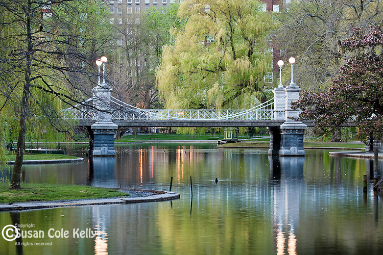Springtime at the Victorian footbridge, Boston Public Garden, Boston, MA, USA