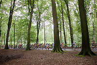 peloton on top of the Kanarieberg riding through the 'Muziekbos' ('Music Forest')<br /> <br /> 69th Halle-Ingooigem 2016 (200km)