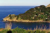 California, Marin County, Muir Beach promontory and Pacific Ocean