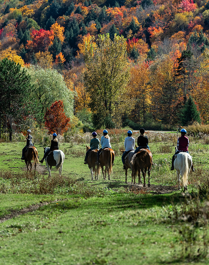 Group on horseback riding excusion , Stowe, Vermont, USA.