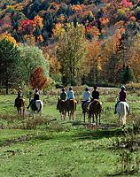 Group on horseback riding excusion , Stowe, Vermont, USA.