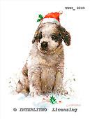 GIORDANO, CHRISTMAS ANIMALS, WEIHNACHTEN TIERE, NAVIDAD ANIMALES, paintings+++++,USGI2240,#XA# dogs,puppies