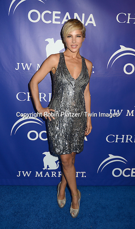 Elsa Pataky attends the Inaugural Oceana Ball on April 8, 2013 at Christie's in New York City.