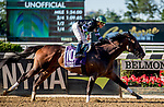 ELMONT, NY - JULY 09: Diversify wins the Suburban during Stars and Stripes Racing Festival  at Belmont Park on July 7, 2018 in Elmont, New York. (Photo by Diana Cohen/Eclipse Sportswire/Getty Images)