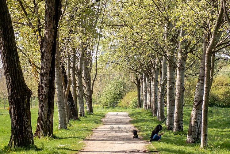 Milano, Parco Nord. Una ragazza con il suo cane seduta lungo un vialetto alberato --- Milan, Parco Nord. A girl with her dog sitting along a tree-lined walkway