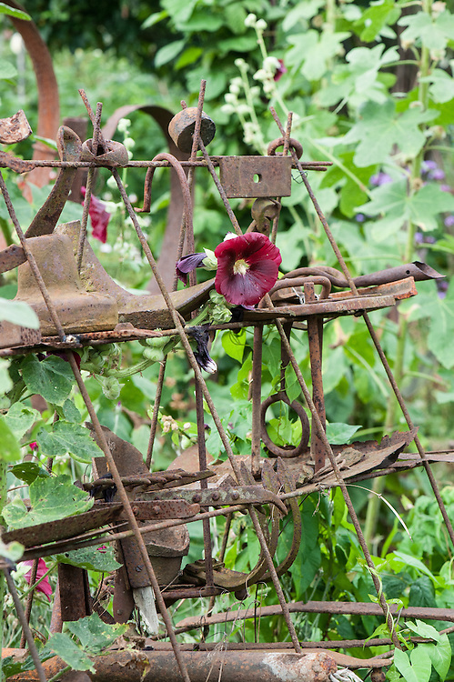 A display of rusty old tools on an allotment plot.