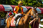 SEPT 06, 2021: BIG SCULLY in the Gr.1 Hopeful  Stakes, for 2-year olds, going 7 furlongs, at Saratoga Racecourse, Saratoga Springs, New York. Sue Kawczynski/Eclipse Sportswire/CSM