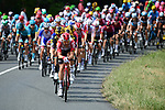 The peloton with led by Lotto-Soudal during Stage 11 of the 2019 Tour de France running 167km from Albi to Toulouse, France. 17th July 2019.<br /> Picture: ASO/Alex Broadway   Cyclefile<br /> All photos usage must carry mandatory copyright credit (© Cyclefile   ASO/Alex Broadway)