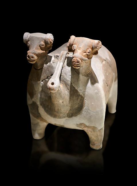 Bronze Age Anatolian terra cotta vtwo headed bull shaped ritual vessel - 19th to 17th century BC - Kültepe Kanesh - Museum of Anatolian Civilisations, Ankara, Turkey.  Against a black background.