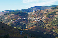vineyards quinta do noval douro portugal