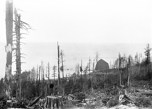 0001-B42 Cannon Beach, Oregon. Logged and burnt, Haystack Heights about 1936