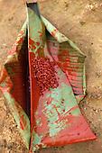A-Ukre, Brazil. Urucum (anatto, Bixa orellana) seeds on a banana leaf being prepared for use as body paint; Xingu.