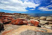 Coastline at Bicheno, Tasmania
