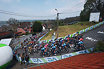 The peloton climb Mur de Huy during the 2021 Flèche-Wallonne, running 193.6km from Charleroi to Huy, Belgium. 21st April 2021.  <br /> Picture: A.S.O./Aurélien Vialatte | Cyclefile<br /> <br /> All photos usage must carry mandatory copyright credit (© Cyclefile | A.S.O./Aurélien Vialatte)