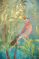 Painted Bird from the Roman fresco of a garden from Villa Livia, Rome (Early first century AD), Rome, Livia was the wife of Roman emperor Augustus.  Museo Nazionale Romano ( National Roman Museum), Rome, Italy.<br /> Trees and shrubs had symbolic importance to the Romans as can be see by the plants used in the trompe-l'œil frescoes from the Villa Livia, Rome, which contains plants linked to the deities particularily venerated by Augustus and Livia.