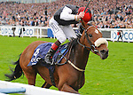 Sapphire (no. 4), ridden by Patrick Smullen and trained by Dermot Weld, wins the group 2 British Champions Fillies' and Mares' Stakes for fillies and mares three years old and upward on October 20, 2012 at Ascot Racecourse in Ascot, Berkshire, United Kingdom.  (Bob Mayberger/Eclipse Sportswire)