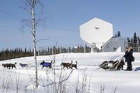 Saturday March 10, 2012  Anjanette Steer passes by a GCI communications dish as she leaves the Galena checkpoint. Iditarod 2012.