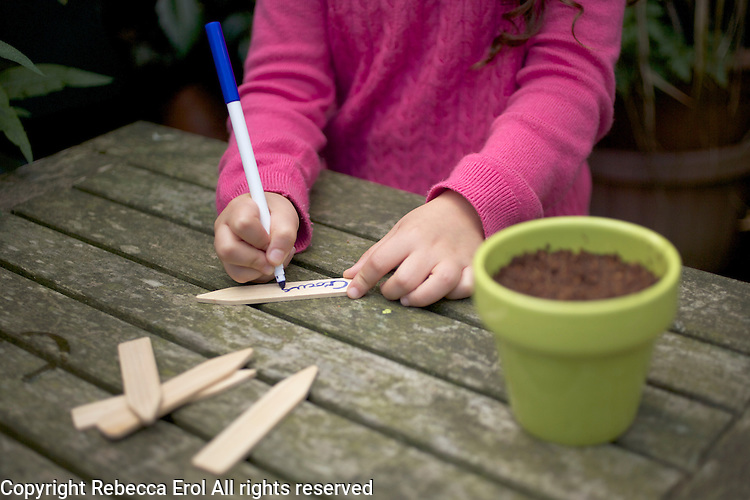 Young girl writing out a plant label for crocus