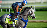 LOUISVILLE, KY - MAY 02: Mohaymen, ridden by exercise rider Miguel Jaime (trained by Kiaran McLaughlin and owned by Shadwell Stable), exercises and prepares during morning workouts for the Kentucky Derby and Kentucky Oaks at Churchill Downs on May 2, 2016 in Louisville, Kentucky. (Photo by Scott Serio/Eclipse Sportswire/Getty Images)