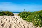 Spanien, Andalusien, Provinz Cádiz, Chiclana de la Frontera: Strand an der Costa de la Luz | Spain, Andalusia, Province Cádiz, Chiclana de la Frontera: beach at Costa de la Luz