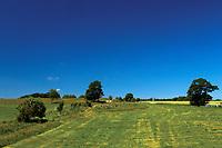 Countryside near Kilbarchan, Renfrewshire